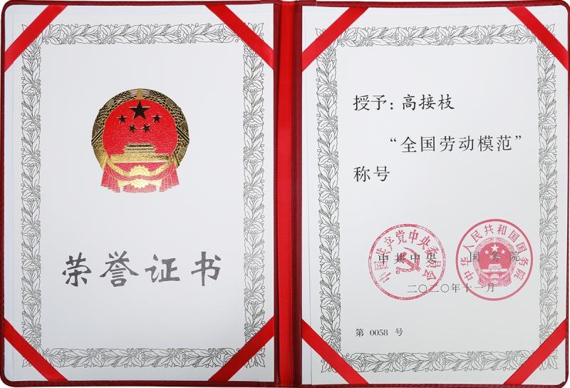 """总工程师高接枝荣获""""全国劳动模范""""荣誉称号"""